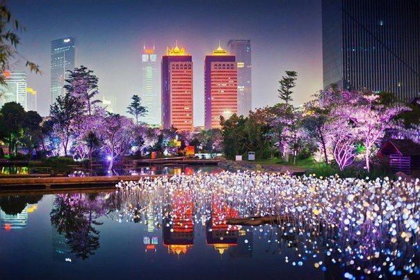 Гуанчжоу ночью, Китай (604x403, 76Kb)