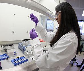 Клетки борются с раком и ВИЧ - Япония (295x249, 21Kb)