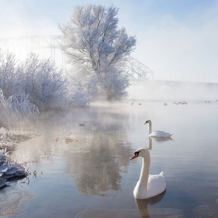 1356026721_gorgeous-winter-landscapes-17 (700x700, 72Kb)