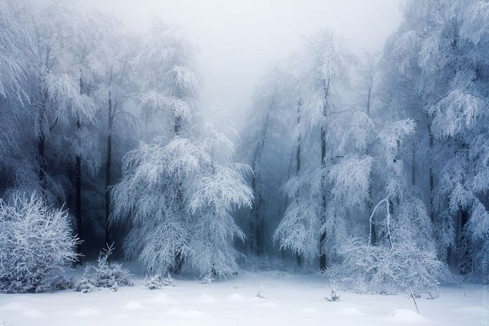 1356026742_gorgeous-winter-landscapes-20 (700x466, 74Kb)