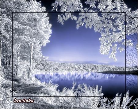 Изморозь-на-деревьях (450x356, 350Kb)