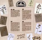 Превью DMC Linen Thread Plants2 (700x671, 110Kb)