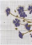 Превью DMC Linen Thread Plants3 (493x700, 327Kb)