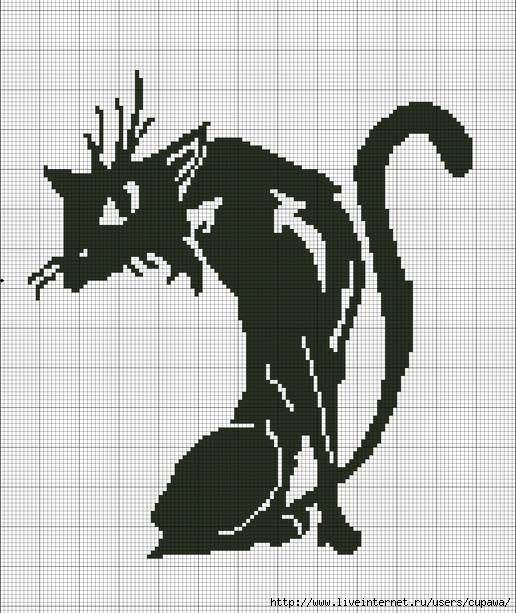 可织可绣的猫图 - maomao - 我随心动