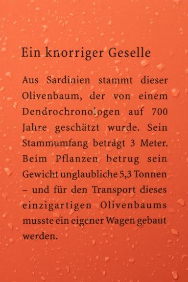 Сады замка Траутмансдорф 18339