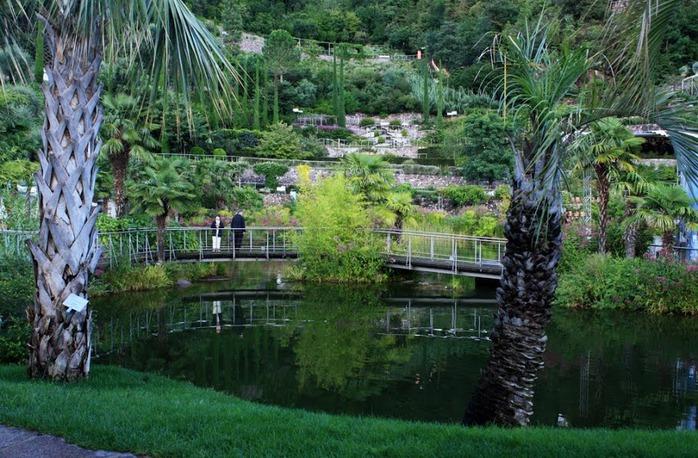 Сады замка Траутмансдорф 10631