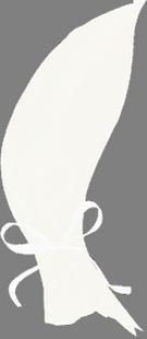 1 ЗАНАВЕСКА (135x310, 60Kb)