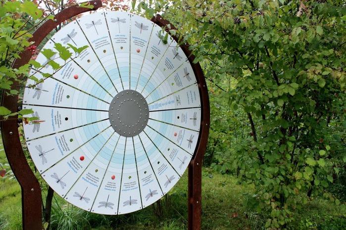 Сады замка Траутмансдорф 75000