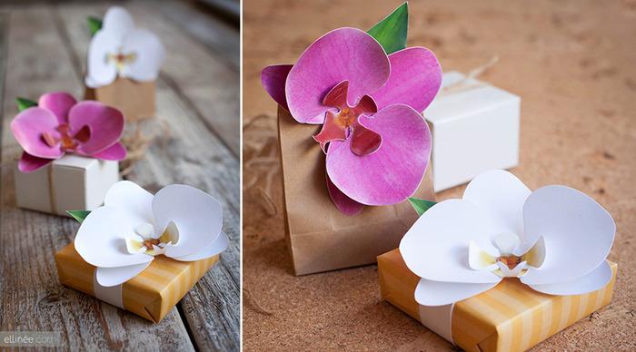 орхидеи (700x388, 96Kb)