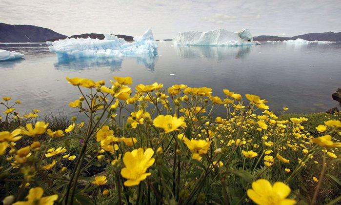 Гренландия45 (700x420, 78Kb)