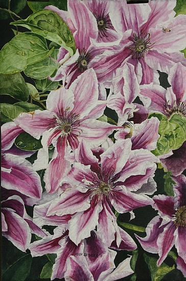 summertime-finery-clematis (364x550, 127Kb)