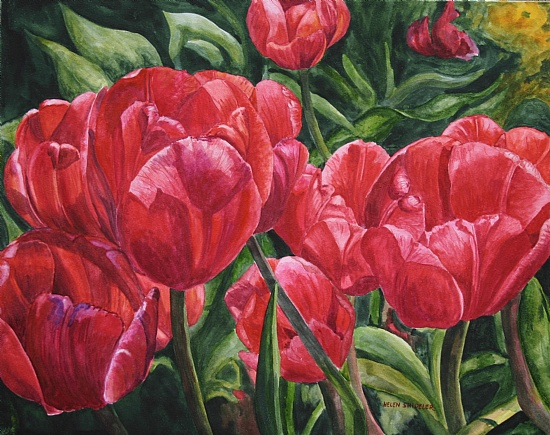 ruby-red-tulips (550x435, 132Kb)