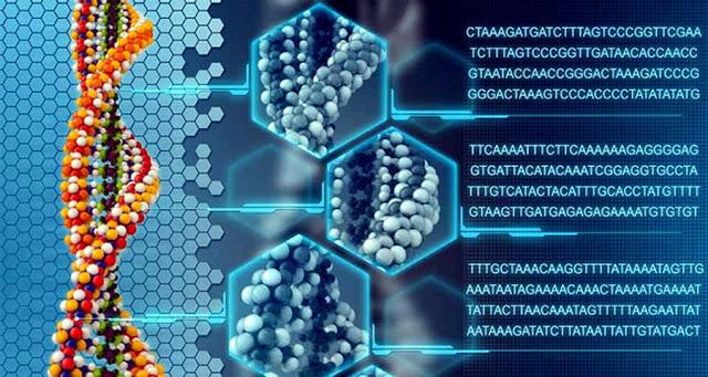 Регенерация мёртвой ткани возможна (640x341, 114Kb)