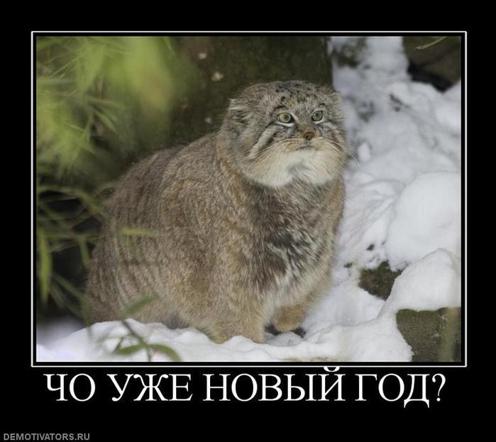 novogodnjaja_otkrytka_2012_pro_gnb (700x623, 49Kb)