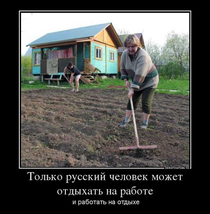 Умом русского человека не понять!