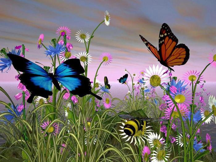 butterfly-001 (700x525, 78Kb)
