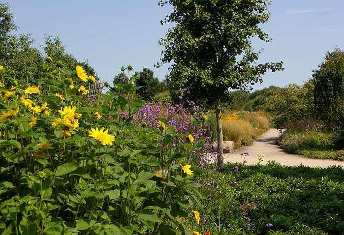 Бад Цвишенан : Park der Garten 51015
