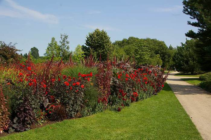 Бад Цвишенан : Park der Garten 42046