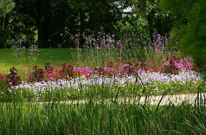 Бад Цвишенан : Park der Garten 86554