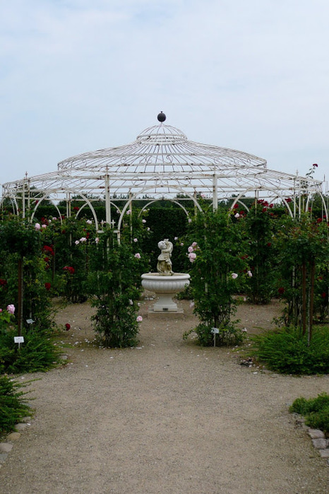 Бад Цвишенан : Park der Garten 19478