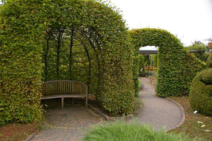 Бад Цвишенан : Park der Garten 66570