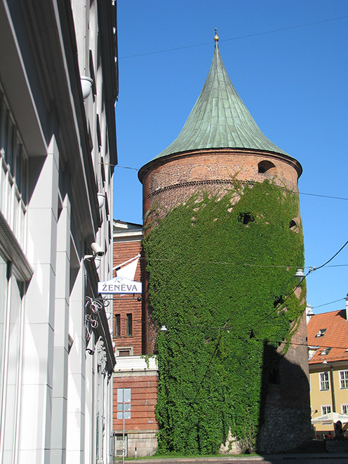 Латвия, Рига/4083456_IMG_3703 (496x661, 154Kb)