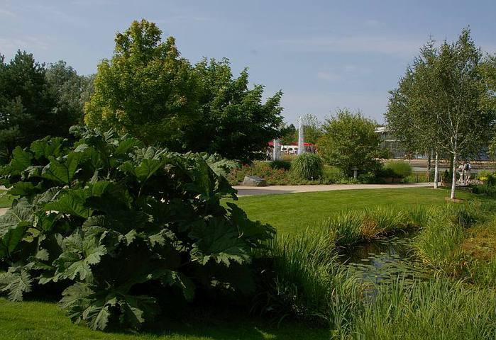 Бад Цвишенан : Park der Garten 43354