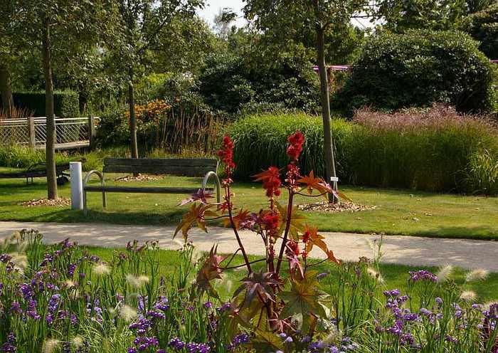 Бад Цвишенан : Park der Garten 79617