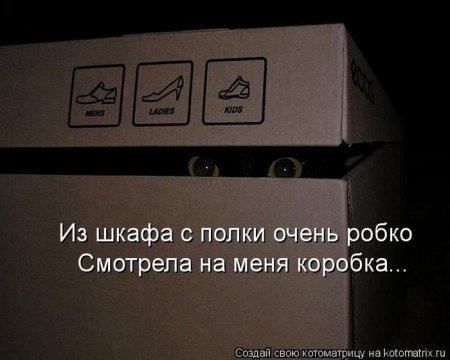 1356105237_kotomatrix_31 (450x360, 25Kb)