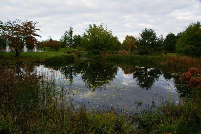 Бад Цвишенан : Park der Garten 27444