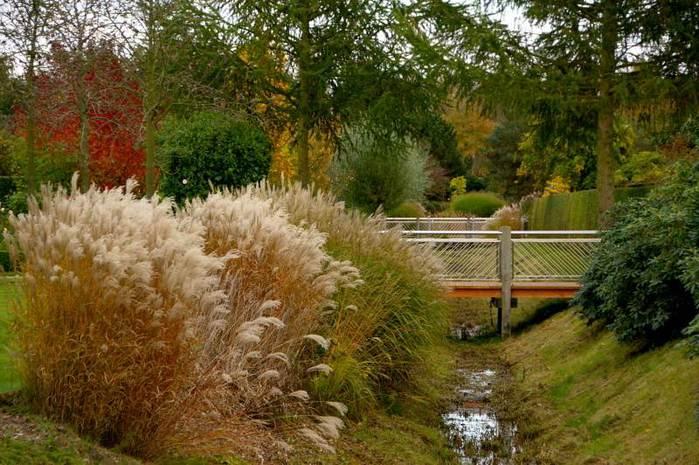 Бад Цвишенан : Park der Garten 16812