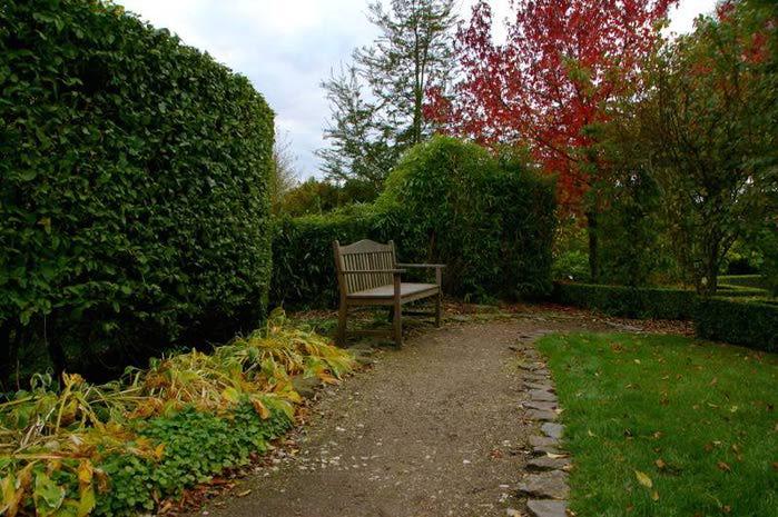 Бад Цвишенан : Park der Garten 54222