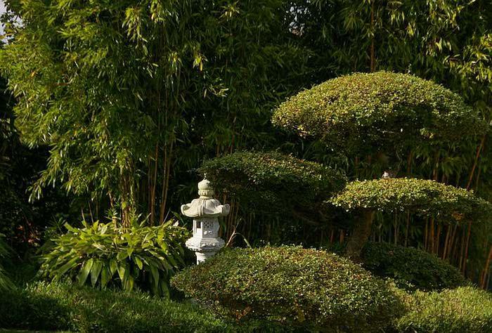 Бад Цвишенан : Park der Garten 33966