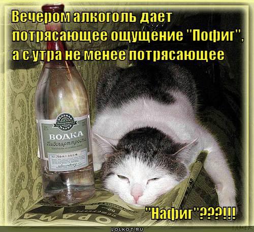 potryasayuscheye-oschuscheniye_1326611522 (500x457, 54Kb)
