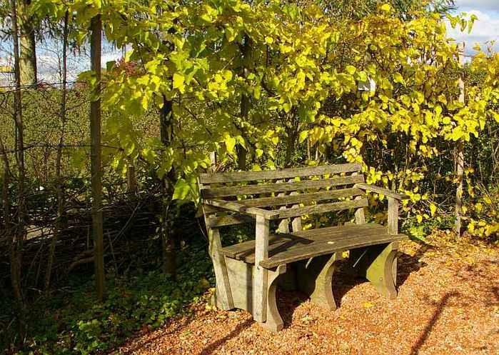 Бад Цвишенан : Park der Garten 11941