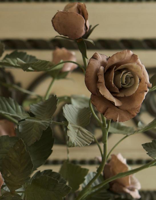 Vlad-roses (547x700, 88Kb)