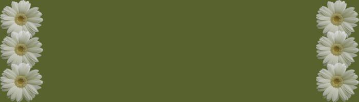 фонпп1 (700x200, 46Kb)