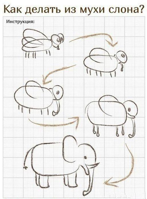 Как из муха сделать слона
