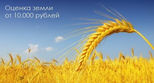 96217198_DB_Image_Land_Ocenka_Zemly_20121112_text (500x270, 50Kb)