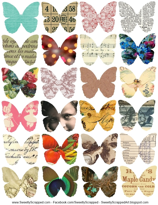 collage butterflies- sweetly scrapped (540x700, 316Kb)