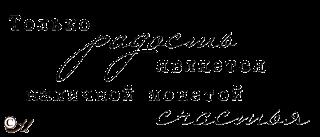 монета счастья (320x137, 19Kb)