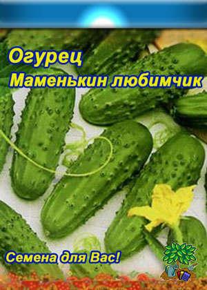 mamenkin_lubimchik (300x420, 31Kb)
