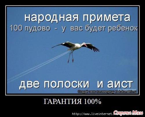 83074723_3610140_97514nothumb500 (500x404, 98Kb)