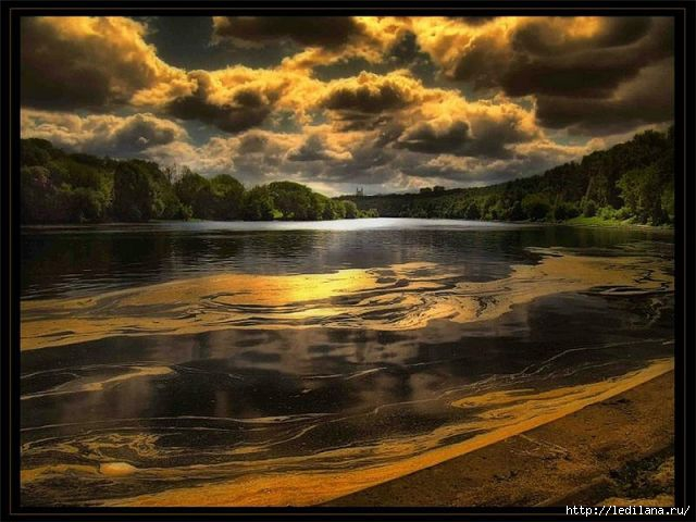 Яркая красота мира6 (640x480, 158Kb)