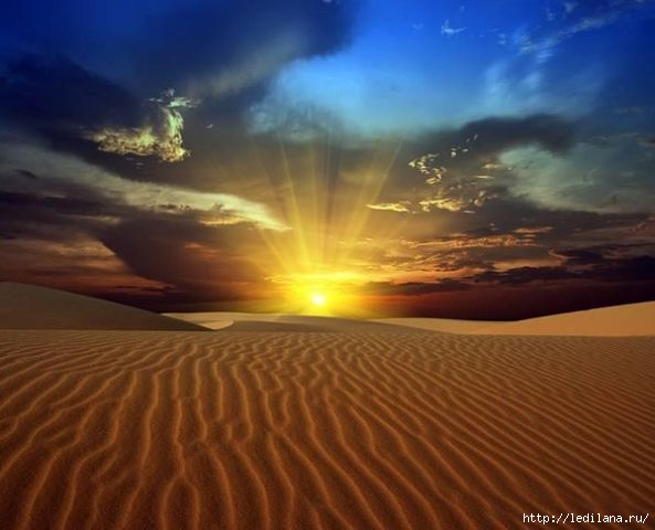 Яркая красота мира47 (593x480, 104Kb)