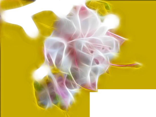 ф15 (640x480, 285Kb)