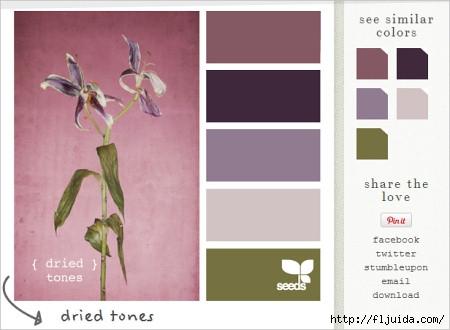 design-seeds-screenshot (450x330, 74Kb)