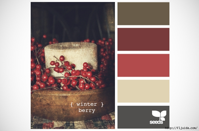 design-seeds-winter-berry-colour-palette-inspiration (700x460, 146Kb)