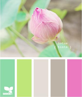 May 18 Design Seeds Image (338x400, 129Kb)