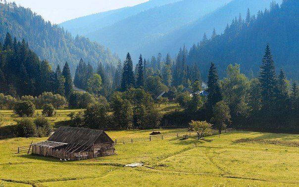 Карпаты, Украина (604x379, 60Kb)